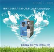 中国Z好的高低温湿热测试仪是哪个品牌?