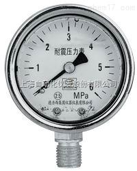 不锈钢耐震压力表0-0.4MPaY-150AZ