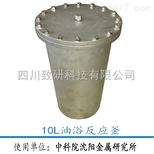 10L静态反应釜