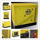 30KW大型汽油发电机组