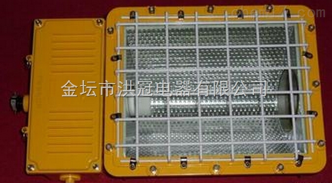 CYBF8980-400w/250w防爆泛光灯 IIBT4