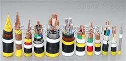 低烟无卤阻燃计算机电缆WLZR-DJYYRP