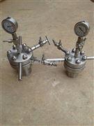 小型简易加热搅拌水热反应釜