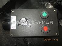 BZC8050BZC8050防爆防腐操作柱厂家零售(4回路控制电路)