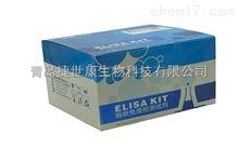 48T/96T小鼠单核细胞趋化蛋白(MCP-3 )elisa试剂盒