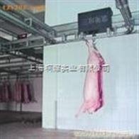 GCS上海轨道秤V轨道电子秤