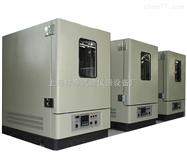 XF/GW-100L上海高温试验箱价格
