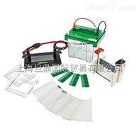 JY-SCZ2+型 垂直电泳槽 单品上市销售