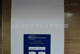 7204美国PALL Pallflex过滤膜TISSUQUARTZ 2500QAT-UP 8*10I