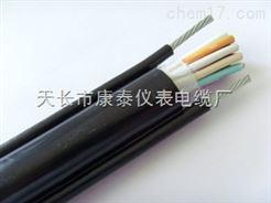 RVVY2G电缆, RVVG电缆厂家