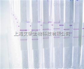 赛多利斯UniSart CN 140 硝酸纤维素膜