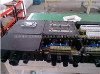 FXX-K/32三防现场开关箱图片|价格