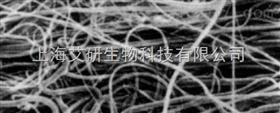 赛多利斯Sartofine PP全聚丙烯材质容尘量Z高的预过滤滤芯