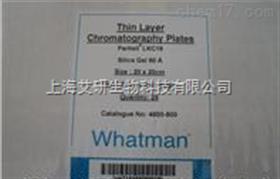 GE WHATMAN 反向TLC板4800-800 4800-600 4800-820 4800-8
