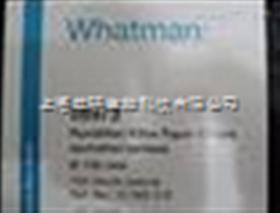 沃特曼whatman grade 597/4-7μm定性滤纸
