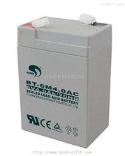 K3190電子秤蓄電池,電子臺秤蓄電池,電子地磅蓄電池,耀華儀表蓄電池