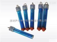 便携式硫酸铜参比电极