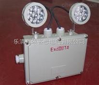 防爆应急灯 BCJ-2X20 LED光源 标志灯 消防应急灯生产