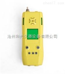 EXH2S/B型泵吸式可燃气、硫化氢二合一检测仪