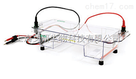 美国BIO-RAD Sub Cell GT水平电泳槽货号1704401