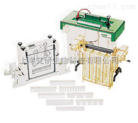 美国BIO-RAD PROTEAN II xi 和XL 垂直电泳槽货号1651801
