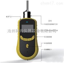 SKY2000-N2型泵吸式氮气检测仪