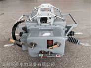 國標產品ZW20-12F智能分界真空斷路器