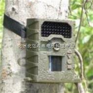 JC15-SG-008红外高清自动夜视监测仪