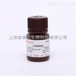 Catalase from bovine liver 过氧化氢酶(牛肝)