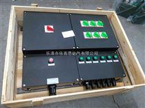 BXM8050-11防爆防腐配电箱IP65防爆防腐配电箱