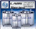 泰莱华顿液氮罐LABS-20K|38K|40K|80K|94K