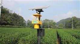 太阳能辐射式杀虫—杀虫新利器