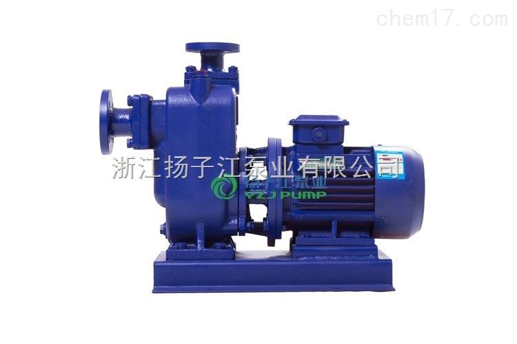 排污泵型号参数,无堵塞自吸排污泵,无堵塞液下排污泵