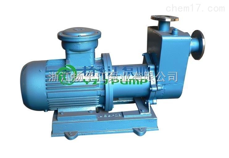 防爆磁力泵,隔爆磁力泵,不锈钢防爆磁力泵,自吸式磁力泵,氟塑料磁力泵,磁力驱动泵