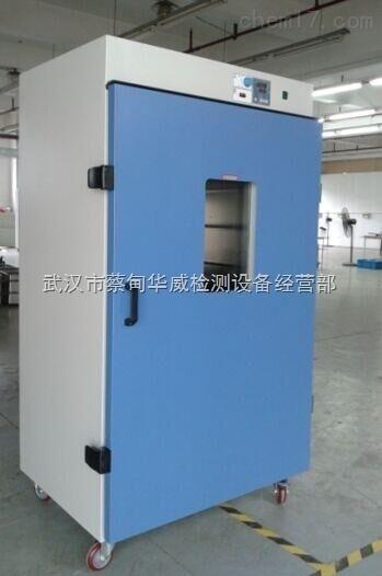 武汉电热鼓风干燥箱