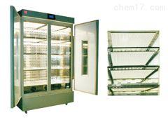 GDN型高光照高光強培養箱