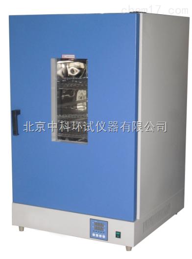 DGG系列立式电热恒温鼓风干燥箱RT+10℃~200℃