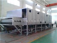 全脂椰蓉帶式干燥機DW-1.2-8A