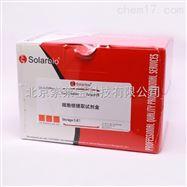 SN0020亚细胞器提取试剂盒细胞核提取试剂盒