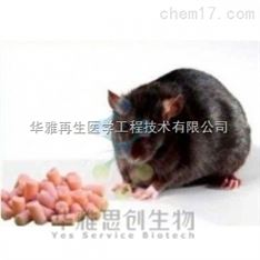 Research Diets中国授权代理商高脂对照饲料