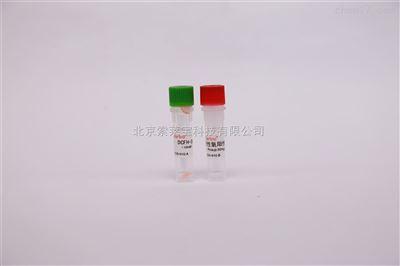 细胞培养试剂 活性氧检测试剂盒