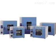 DHG-9053A鼓风干燥箱  恒温鼓风干燥箱价 干燥箱实验箱体