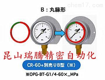 带彩色环的ASK压力表OPG-BT-G1/4-60x16MPa-CR