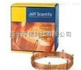 HP-1/DB-1系列毛细管色谱柱/色谱柱*