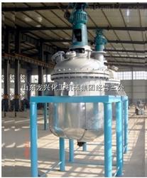 500L零距离电加热反应釜