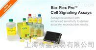 伯乐Biorad细胞计数板  计数板试剂盒1450016现货