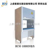 BCM-1000厂家直销正压风生物净化工作台 上海实验工作台厂家