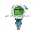 PM10-CY80低功耗现场LCD显示压力变送控制器(电池供电)