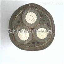 MYJV矿用高压电缆MYJV22矿用铠装电力电缆