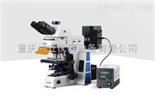 RX50研究級熒光顯微鏡